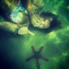 Thai starfish